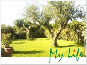 MyLife B&B