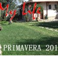 &nbsp; &nbsp; Pronti per la Primavera 2013, con prezzi low cost potete visitare la Puglia e Basilicata. &nbsp; MyLife B&amp;B per Innamorati. Chiedete informazioni sulle localita&#039; da visitare. &nbsp; &nbsp;...