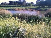 fiume Lato